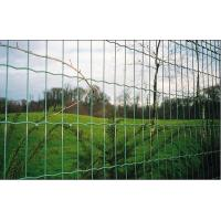 China Vinyl Coated Garden Border Fence , electric poultry netting on sale
