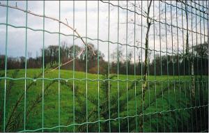 China El vinilo cubrió la cerca de la frontera del jardín, red eléctrica de las aves de corral on sale
