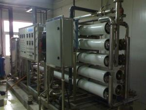 China 20 Ton/Hour Stainless Steel Pure Water Treatment Plant for Food and Beverage Industry on sale