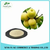 China Natural Sydney / Snow Pear Fruit Juice Powder on sale