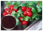 Dark Red Powder Antifungal Plant Extracts PACs From Cranberry Anti Radiation