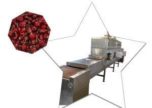 China Conveyor Belt Industry Tunnel Chili Drying Machine Frequency Less Down Time on sale