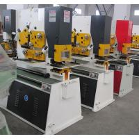 China Q35Y Combined Hydraulic ironworker Machinery , Steel Hole Punch Machine on sale