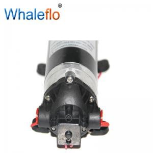 China Whaleflo  Household High Pressure 100 PSI Water purifier 12V/24V Boost RO diaphragm Pump Water Booster pump on sale