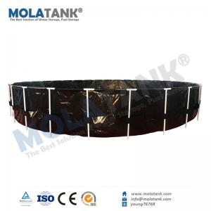 Molatank Economic PVC Folding Portable Aquarium Fish Farming Tank