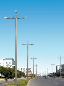 China 3 meters 3.5m height outdoor decorative led landscape aluminum light pole on sale