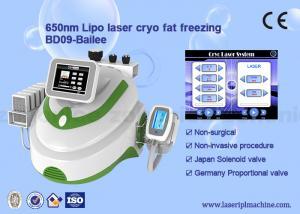 China Cryolipolysis + lipo laser (8 laser pads)  + cavitation +  rf vacuum weight loss machine on sale