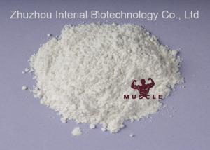 China Alpha Adrenergic Agonist Epinephrine Powder L(-)-Phenylephrine hydrochloride for Anesthetic on sale