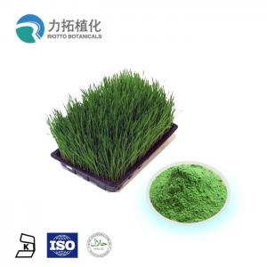 China Organic 100% Fruit And Vegetable Juice Powder Water Solube Barely Grass Powder on sale
