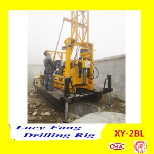China China Hot Sale XY-2BL Crawler Mounted Micropile Hole Drilling Rig With Mud Pump on sale