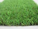 CE Outdoor Artificial Grass 8800Dtex PE With 25mm Height