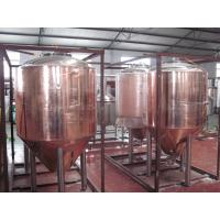 Professional Copper Mirror Small Beer Brewing Systems , Nano Brewery Equipment