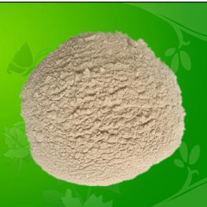 China Probiotics Bacillus Licheniformis for Feed Additives on sale