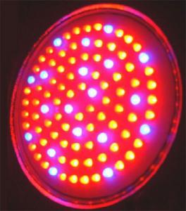 China High power 50W-3GB red, blue led hydroponic plant growing lights for indoor plants on sale