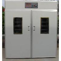 Hatching Machine Promotion Type