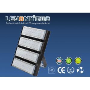 China 250 W High Power LED Flood Light 36 Degree Beam Angle High Pole Lighting Ourdoor on sale