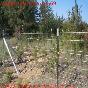 China high quality cow or cattle fence wire mesh/Galvanized cattle farm livestock wire fencing mesh/Hinge Joint  Field Mesh on sale