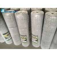 hebei PVC coated 2.5mm / 3.2mm anti-bird wire mesh / hexagonal wire mesh ( manufacturer & ISO made in china from dingzho