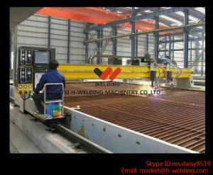 China Gantry Type Plasma CNC Cutting Machine Japanese Panasonic For Steel Industry High Speed on sale