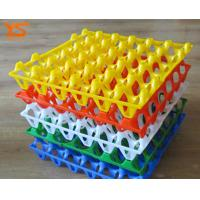 PE Plastic Quail Chicken Egg Hatch / Incubator Tray For Sale WhatsApp:15638238763