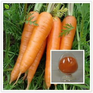 China factory price carrot powder as natural pigment on sale