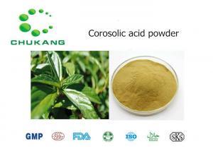 China Corosolic Acid Plant Extract Powder White Amorphous Powder CAS 4547 24 4 on sale