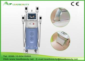 China Promotion Body Cryolipolysis Slimming Machine Semiconductor Cooling on sale