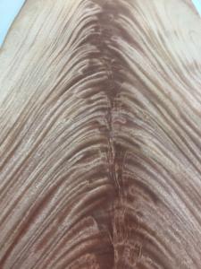 Mahogany African Khaya Crotch Wood Veneer For Sale Burl