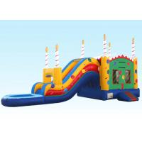 Birthday Cake Water Inflatable Bouncer Combo With Logo Printing
