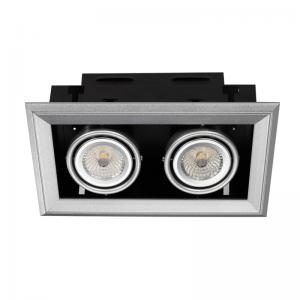 China frame LED downlight 2*10W with built- in driver LED down light with 2 led lamps on sale