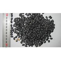 China Black Kidney Beans on sale