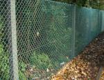 China Supplier,PVC Coated after Galvanized Chain Link Fencing for garden fence,MIC