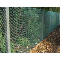 China China Supplier,PVC Coated after Galvanized Chain Link Fencing for garden fence,MIC on sale