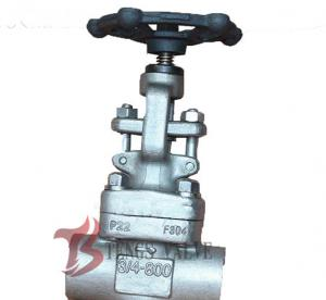China 3/4 Inch Industrial Globe Valve 800LB , Forged Stainless Steel Globe Valve on sale