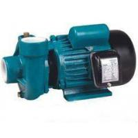 China AC Pump PX-205 2HP 3 Phase Centrifugal Garden Water Pump 220v 50Hz on sale