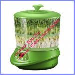 petite machine croissante de pousse de haricot, machine croissante à la maison de pousse de haricot