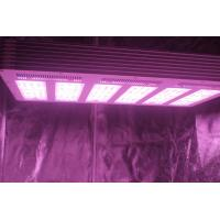 China 1.5g/watt 630W  LED Growing Light  with full spectrum For Plants Growth on sale