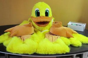 Quality Custom Cartoon Character duck mascot costumes for Various parties for sale