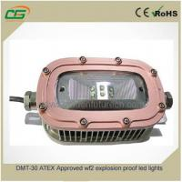 China 30 Watt 120 Degree 130V Explosion Proof Floodlight For Mining 50Hz ATEX IP65 LED on sale