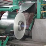 0,3 до толщина 3.5mm гальванизировала коррозионную устойчивость катушки стальной плиты/GI