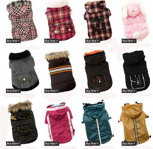 China winter fashion exquisite dog jacket on sale