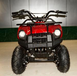 China 49cc New Model small ATV,2-stroke.air-cooled.hot sale models in Eurpoe.good quality. on sale