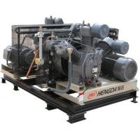 Energy Saving 22KW Oil - Free Gas Powered Air CompressorWith Solenoid Valve