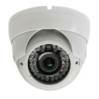 12mm Lens Auto White Balance 768(H)*494(V) NTSC IR CCD Dome BLC Camera