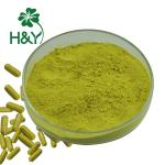 HPLC Quercetin 95% Herbal Sophora Japonica Extract