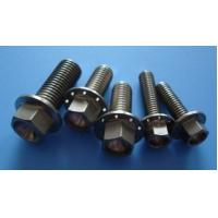 China Gr5 Titanium Hex Flange Bolts,Motorcycle Flange Bolts on sale