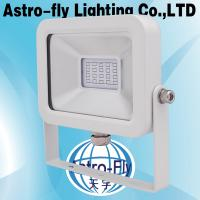 10W 20W 30W 50W LED Floodlight
