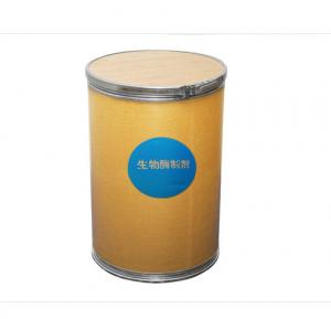China Natural healthy goods additive Papain 1000000u/g with Koser Halal certificate accept small order on sale