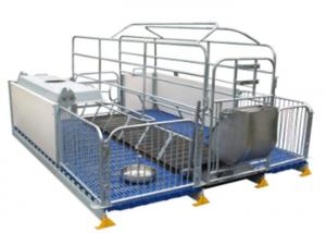 China Stainless Steel Sow Farrowing Crate Pig Farm Adjustable Cast Iron Floor Slat on sale