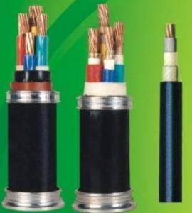 China PVC insulated power cable of rated voltage 0.6/1kV on sale